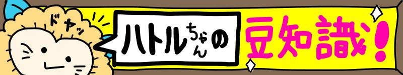 ハトルちゃんの豆知識