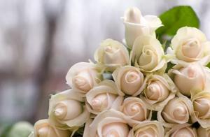 女性のための結婚相談所 TARO仲人事務所 金沢